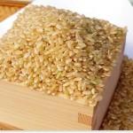 玄米のカロリーを白米一合と比較!糖質にも違いあり?