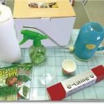 ブロッコリースプラウトは自宅で栽培可能?カビへの注意点!