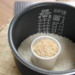 ファンケルの発芽米はダイエットにおすすめ?カロリーや口コミまとめ!
